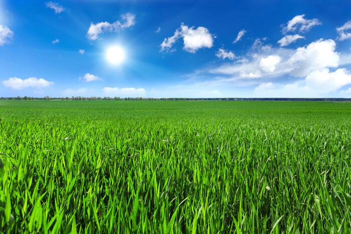 太陽光発電と農地の相性